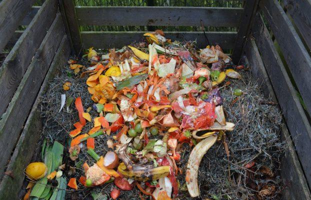 Bioloģiski noārdāmo atkritumu šķirošanas iespējas